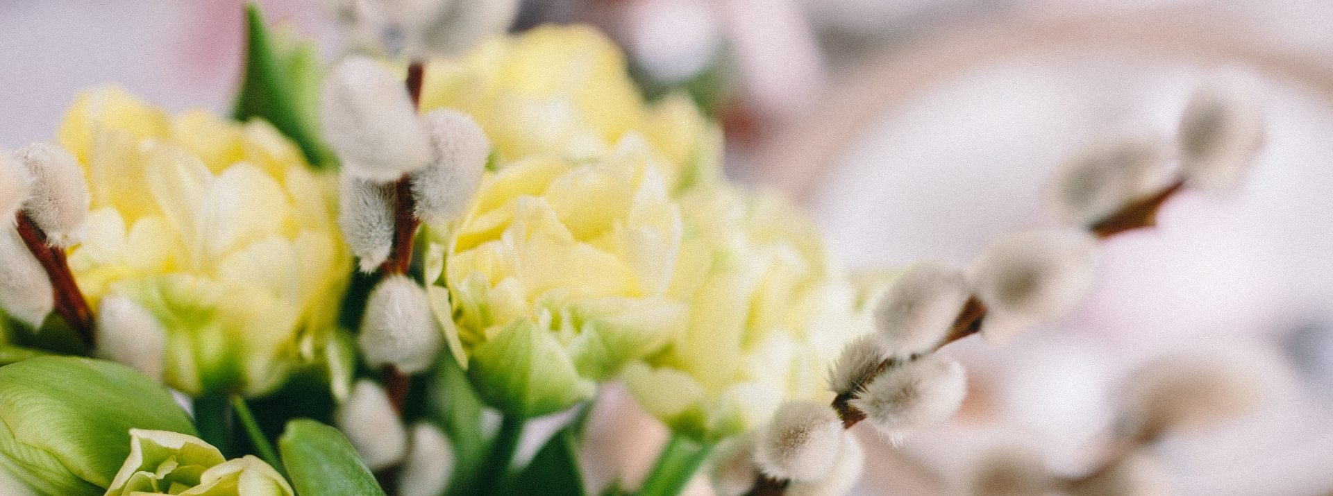 cropped-kaboompics.com_Spring-flowers-on-a-table.jpg